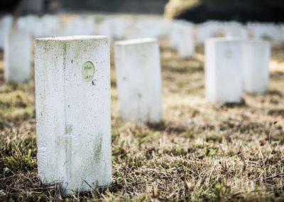 Dossier: elke week 5 zelfdodingen in West-Vlaanderen